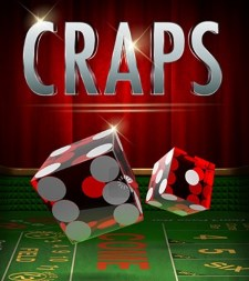 What do some of the main terms in craps mean?