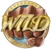 Gamblers love to play wild slots!